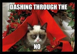 grumpy_cat_dashing