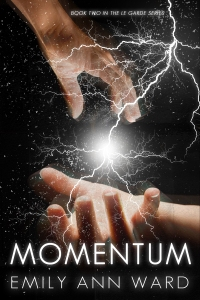 Momentum by Emily Ann Ward